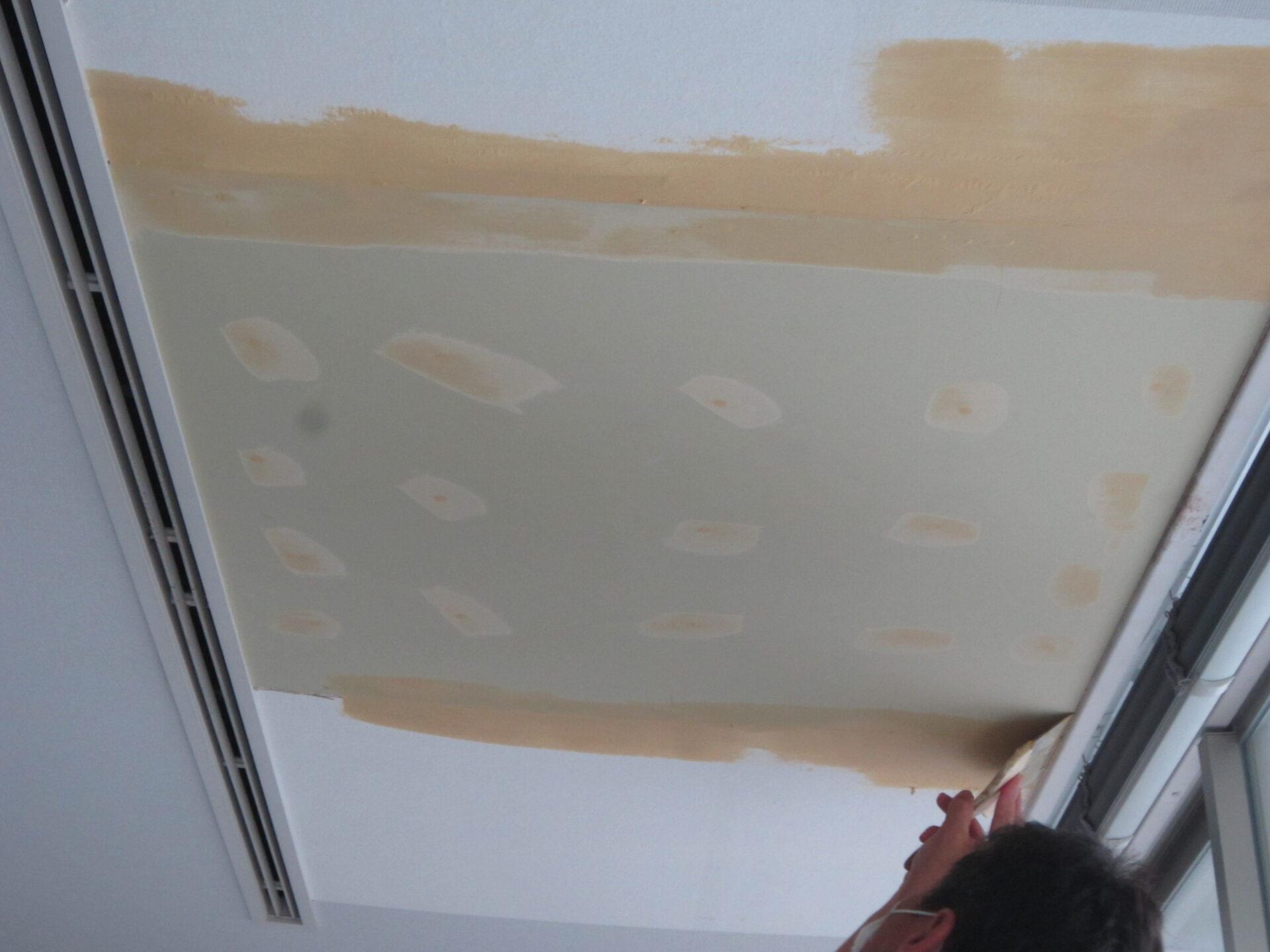 天井雨漏り修繕工事画像5